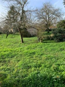 For sale Land COZES  17